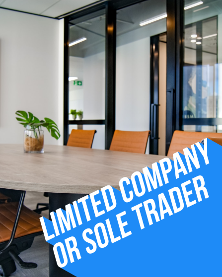 Limited Company or Sole Trader